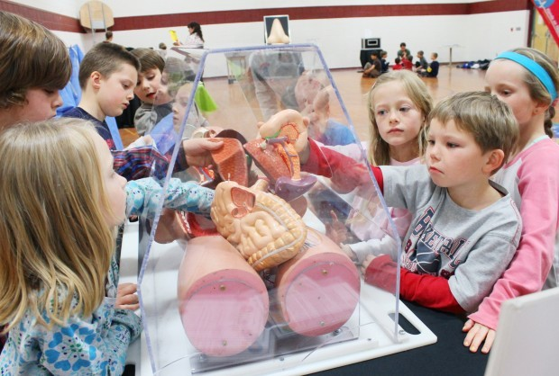 Scientific discovery: Hamilton students learn at 'Hands on Health' science exhibit