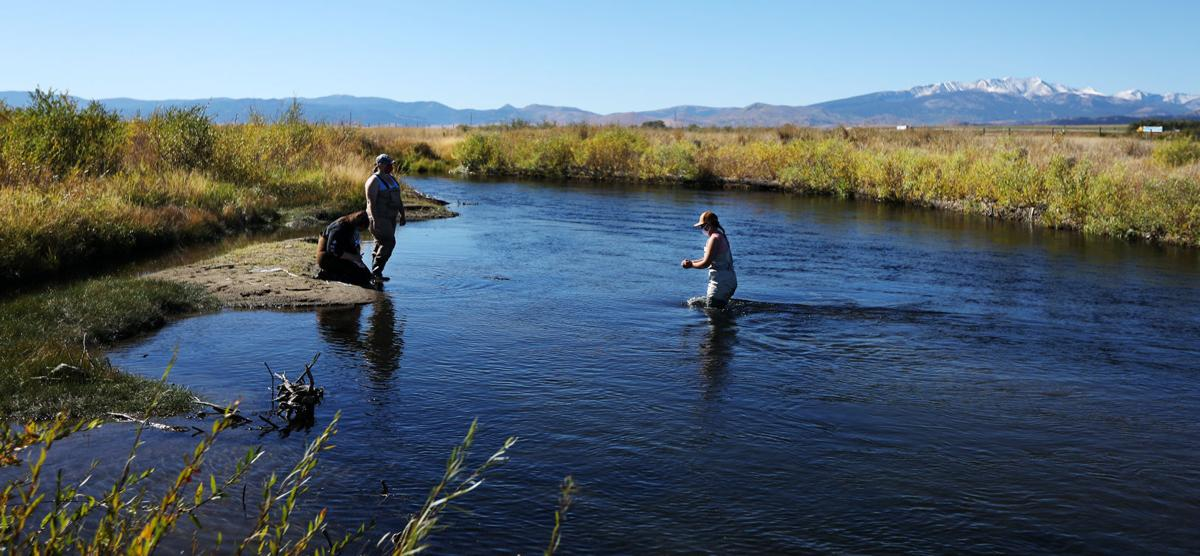 UM Western students provide valuable data in the effort to cleanup the Upper Clark Fork