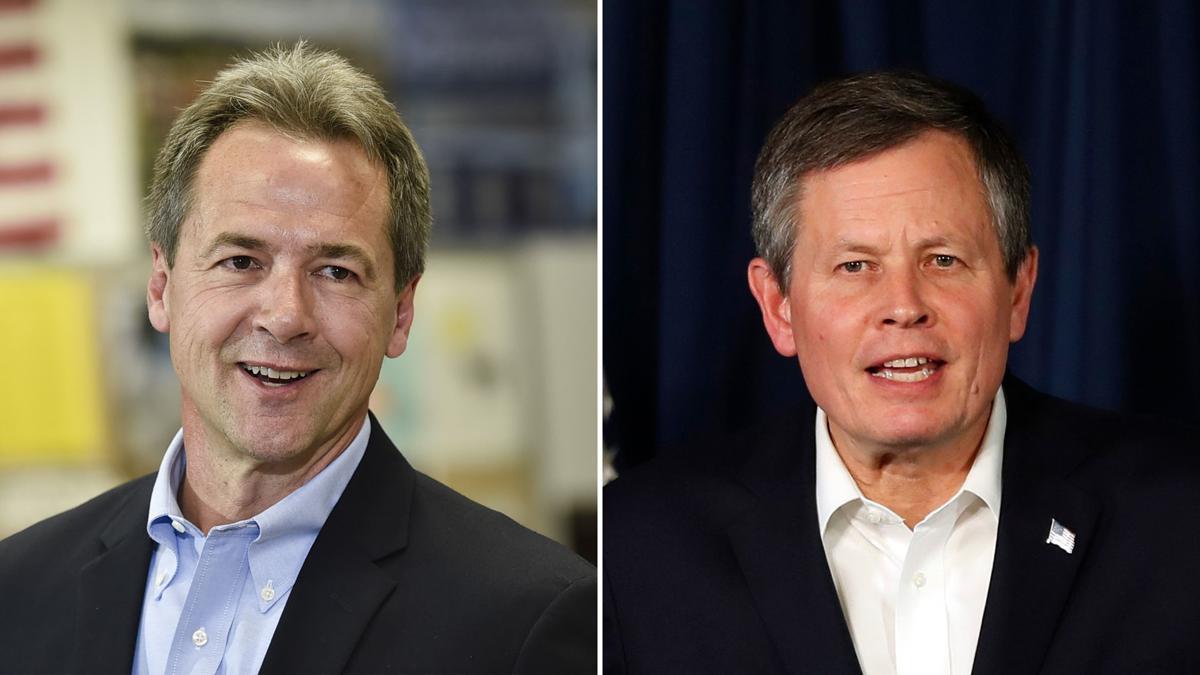 Montana U.S. Senate race