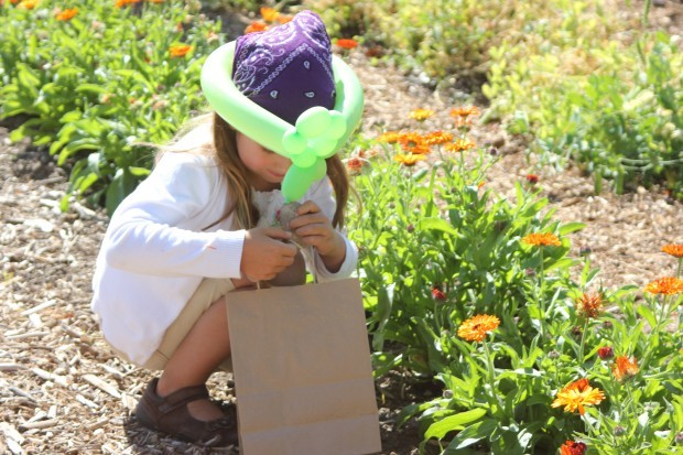 """Growing and learning: Hamilton Garden Club set to host 10th annual """"Kids in the Garden"""" event"""