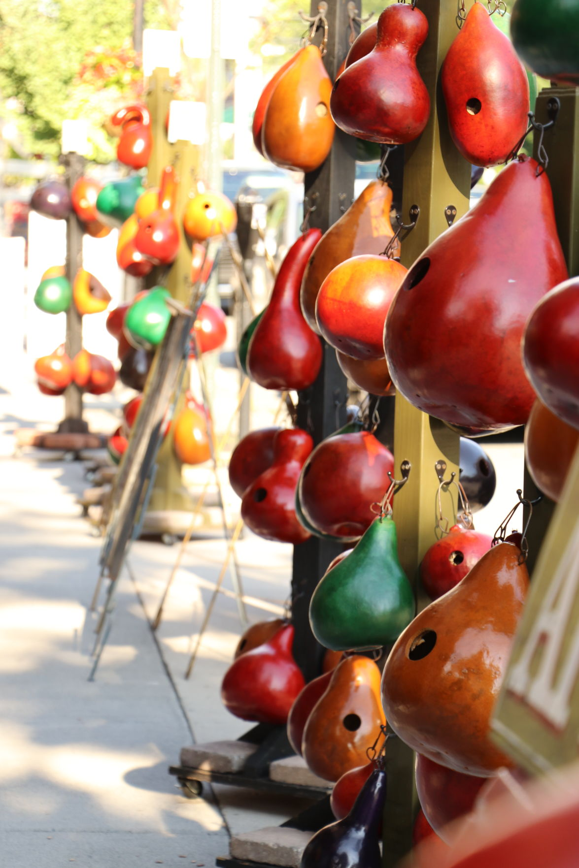 Grand gourds: Herbaceous plants make good holiday gifts