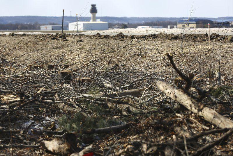 Airport's tree cuttings cause stir