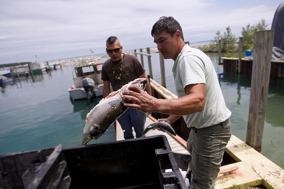 PESHAWBESTOWN FISHING