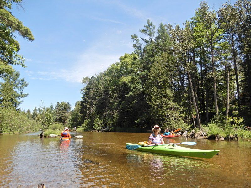 Manistee River offers small stream thrills