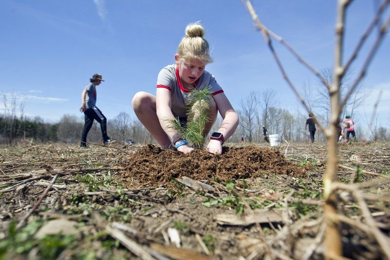 Greenspire students plant nearly 700 trees in celebration of Earth Day