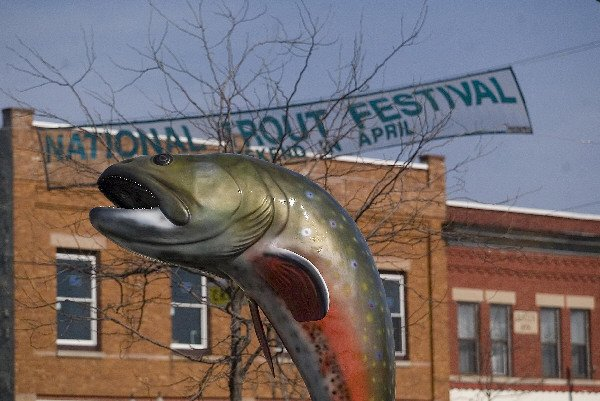 ONLINE ONLY trout statue photo