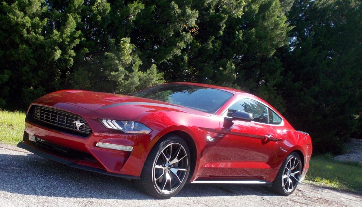 2020 Mustang Eco Boost  driver side.jpg