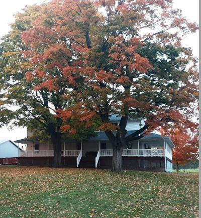 Autumn at Eicher house.jpg