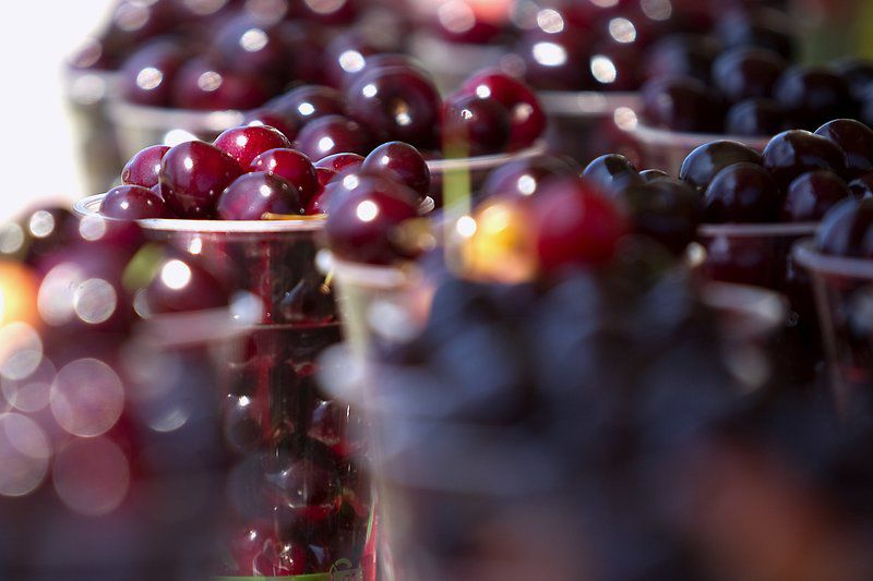 Festival's fruit of local labor prepared infinite ways