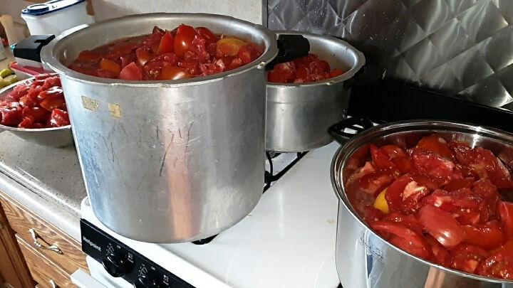cooking tomatoes.jpg