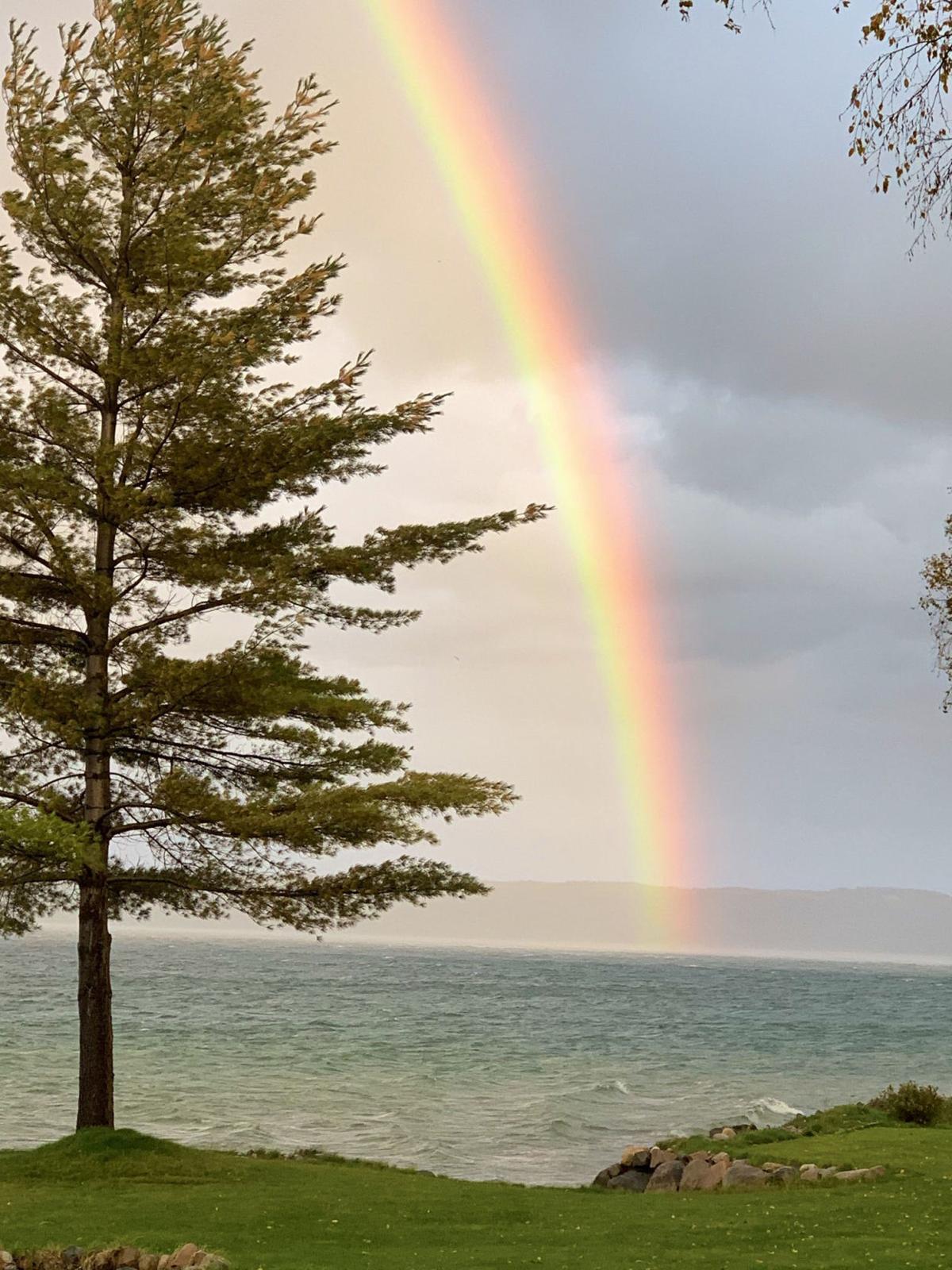 Skegemog rainbow