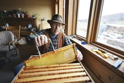 Beekeeper pursues cause of hive problems