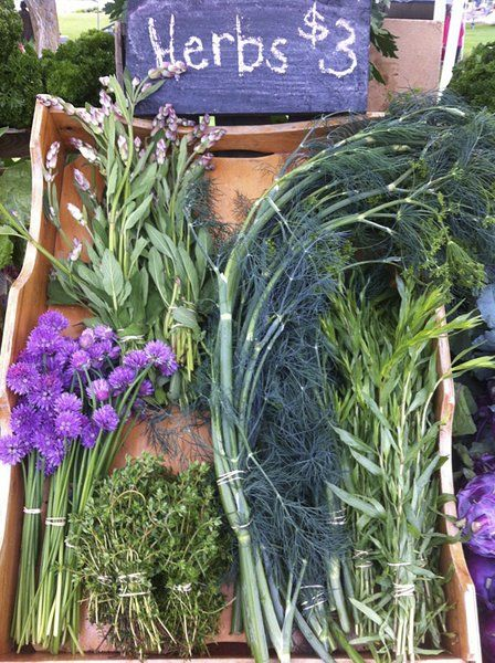 FROM THE FARM: Herbs give bang for the buck in small gardens   Local ...