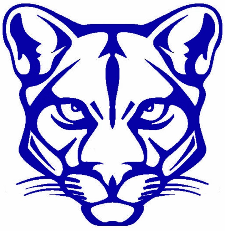 lake in the hills cougars personals Lake in the hills mustangs 96 lake villa palombi: lake villa lancers 97  cougars 180 round lake park: round lake wolves 181 roxana: roxana shells 182.