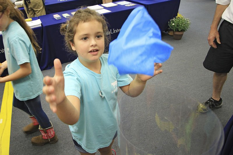 STEM-Care initiative works to instill confidence in kids