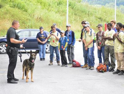 Local communities teeming with Boy Scout volunteers