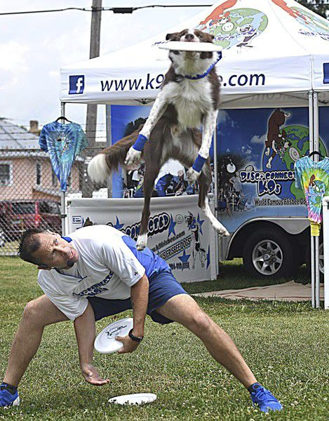 Rescue dogs entertain and inform audiences about second chances Each animal comes with a story