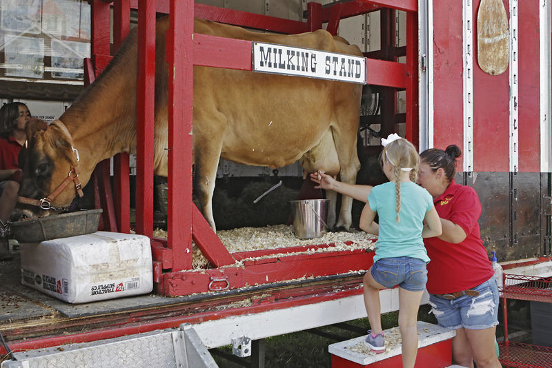 Cow Town USA offers youngsters a glimpse back in time (WITH