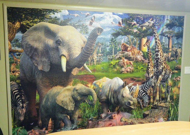 A puzzled look: Locals take on jigsaw puzzles that double as