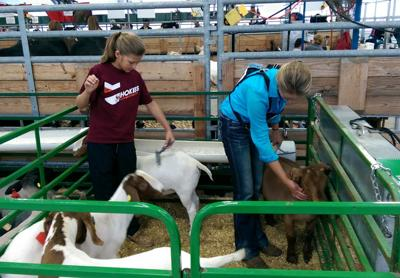 State Fair helps carry on family traditions | Local News | register