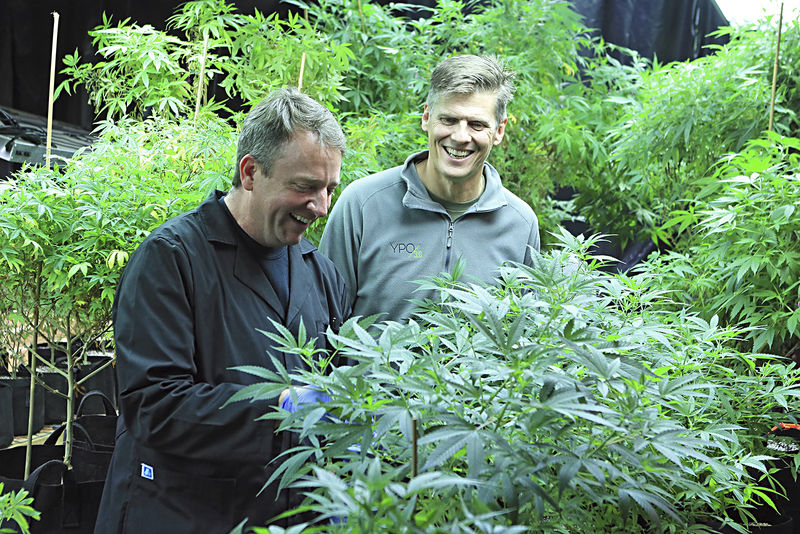 High hopes for hemp in the Mountain State