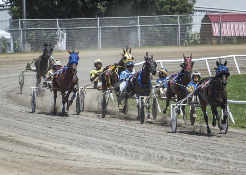 5b6915e746911.image?resize=400%2C286 harness races at state fair to feature 50 50 drawing news