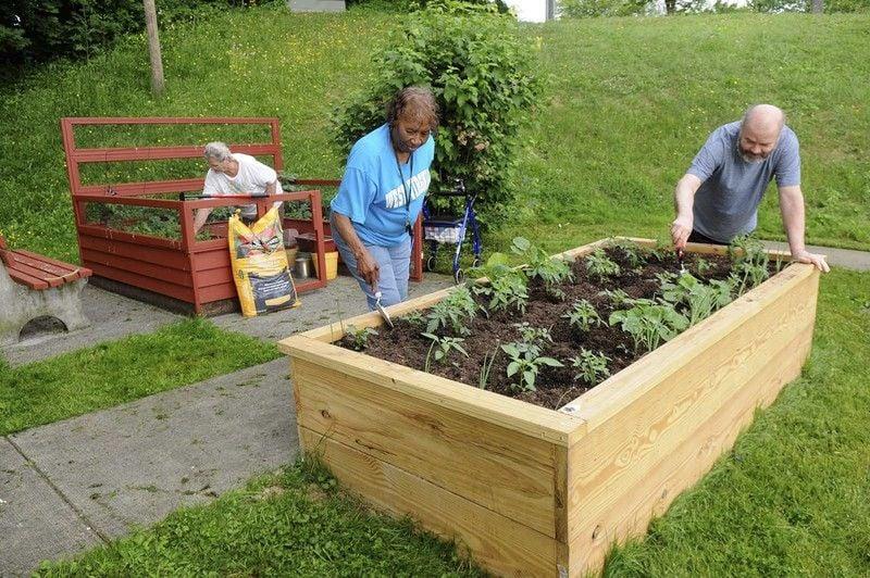 Gardening made simple through raised beds, ergonomic tools | Sunday ...