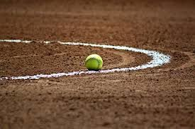 Shelley Softball Preview