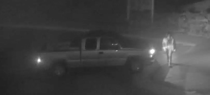 Madison Sheriff's office looking for person suspected of vandalism
