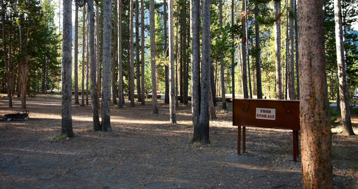 Food Box in Yellowstone Campsite