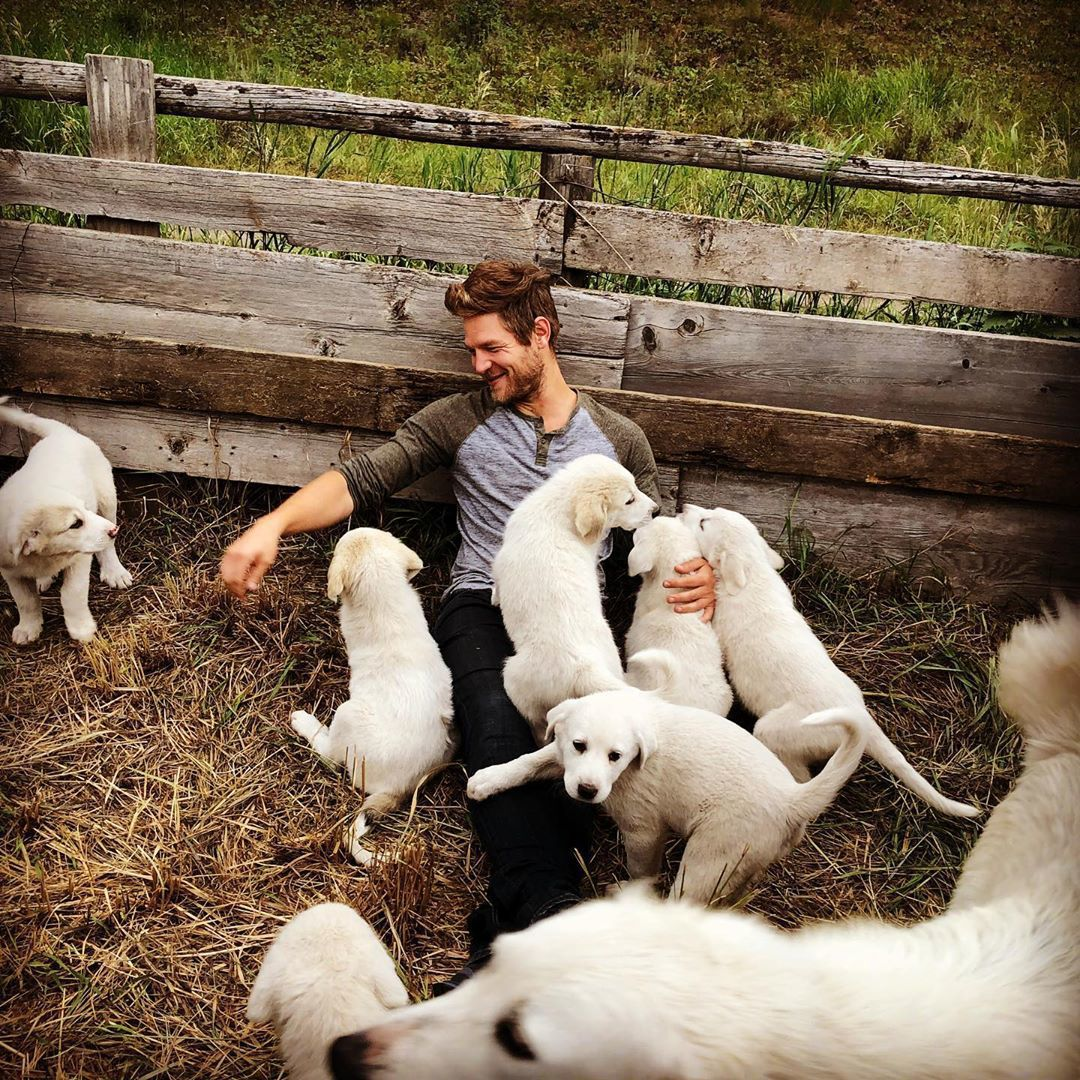 Cory Peavey with sheepdog puppies.