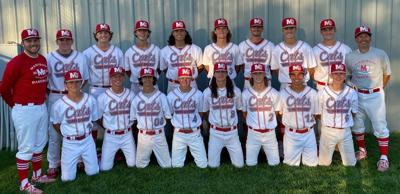 The Madison Cats AA Legion Baseball team poses for a photo.