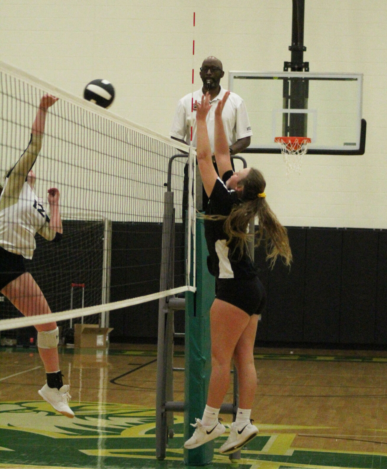 RCHS LADY EAGLE VOLLEYBALL BOWS OUT OF DISTRICT TOURNEY