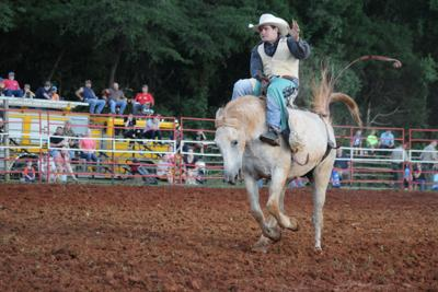 Rhea County Fair