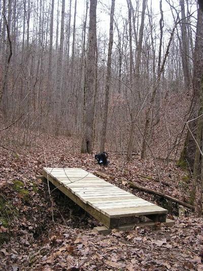 Whites Creek Trail