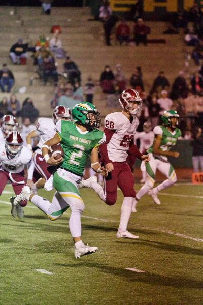 EAGLES FALL TO WILDCATS IN PLAYOFFS