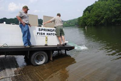 Lake Chickamauga Bass Fishing S Perfect Storm News Rheaheraldnews Com