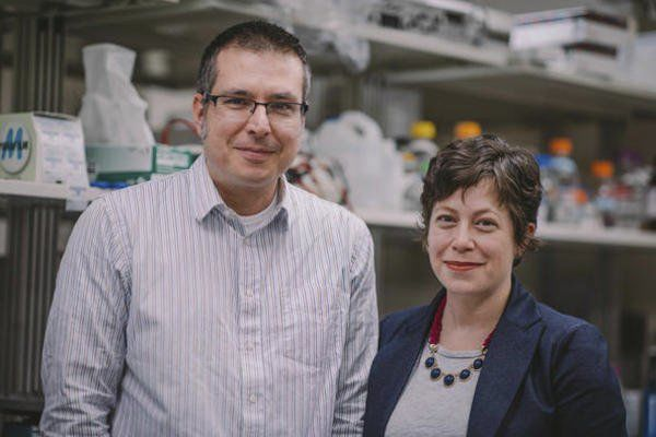 UK chemists study new cancer therapies