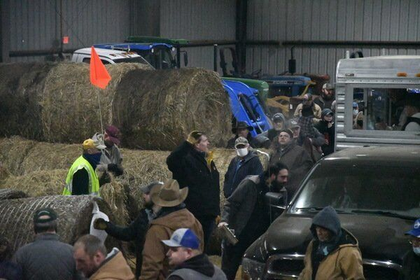Local farmers take advantage of record hay sale