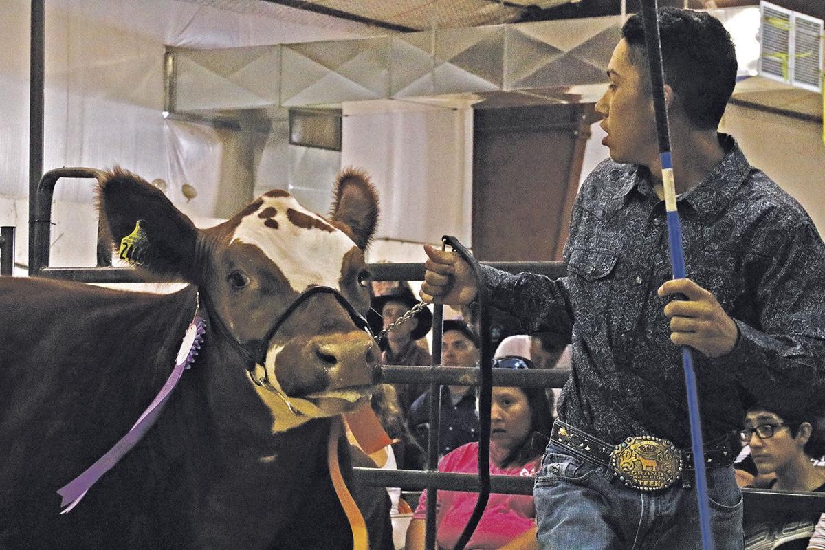 county fair 2019 archuleta.jpg