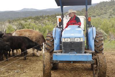 tommy casados tractor