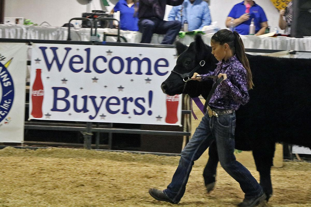 county fair 2019 Tiffani Archuleta.jpg