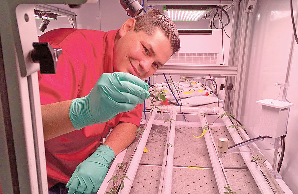 NASA Technical and Horticultural Scientist Jacob Torres works in the water for microgravity test bed at the Kennedy Space Center's Space Station Processing Facility in Merritt Island, Fla. Thanks to Torres' suggestion, the Española chile pepper will be the first fruiting plant to be grown in space this November on the International Space Station. (Photo courtesy Jacob Torres)