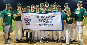 Junior boys all-stars named District 29 champions