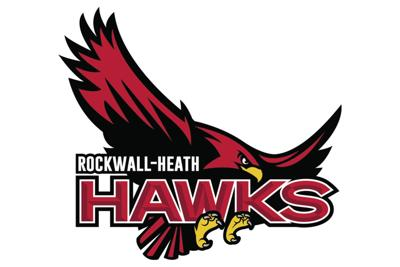 Hawks fall at state