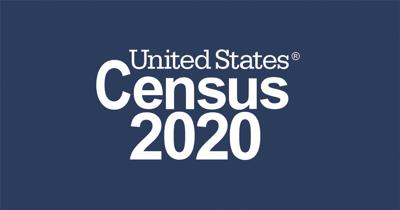 Census response