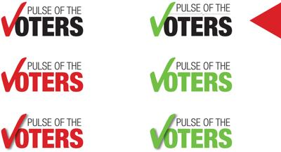 Pulse the Voters