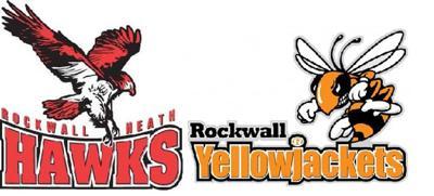 Hawks and Yellowjackets