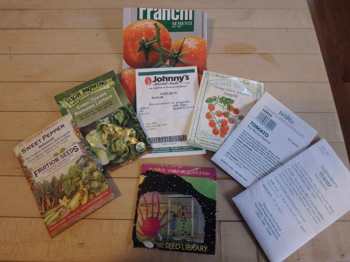 MAG_It's time to sort through your seeds to see what you need