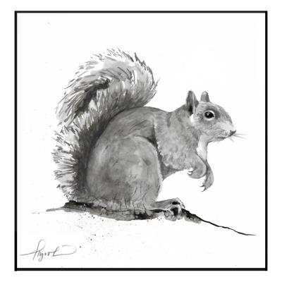COMM_TOS_Gray_Squirrel.jpg